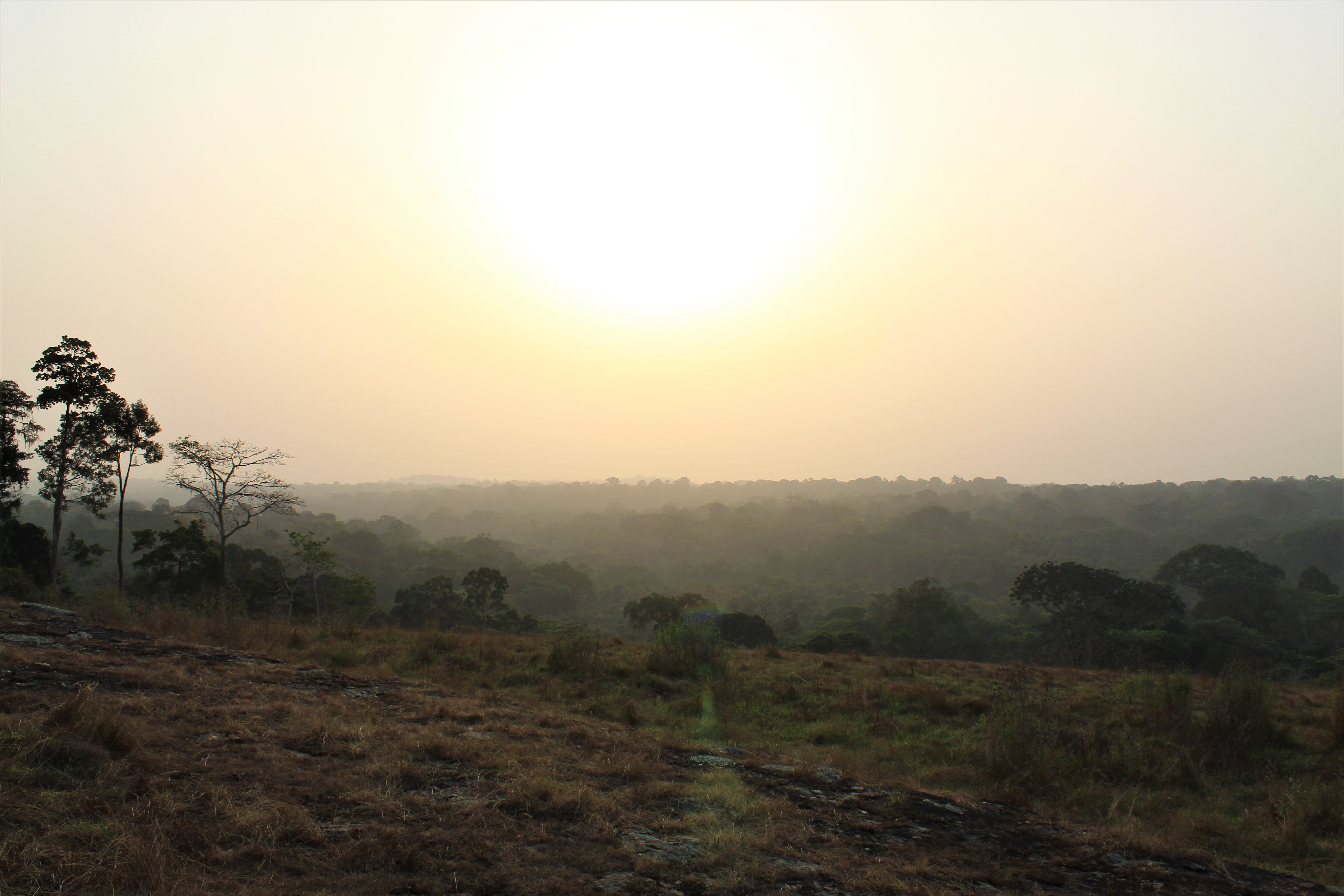 Sunset over the Dja Biosphere Reserve, Cameroon
